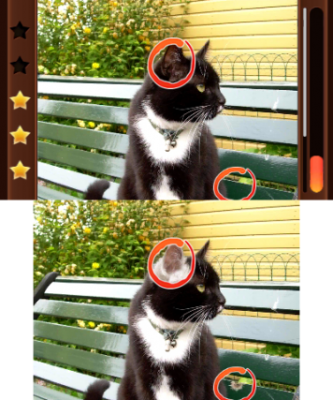 Katzen können niemals falsch sein!