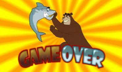 Bär und Hai haben gewonnen