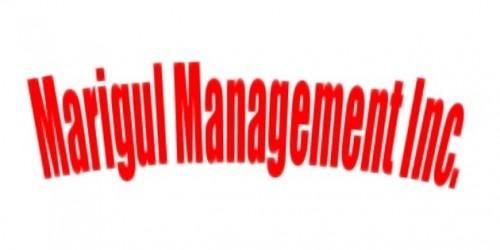 Newsbild zu N64-Themenwoche // Spezial: Marigul Management