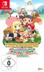 Cover von Story of Seasons: Friends of Mineral Town