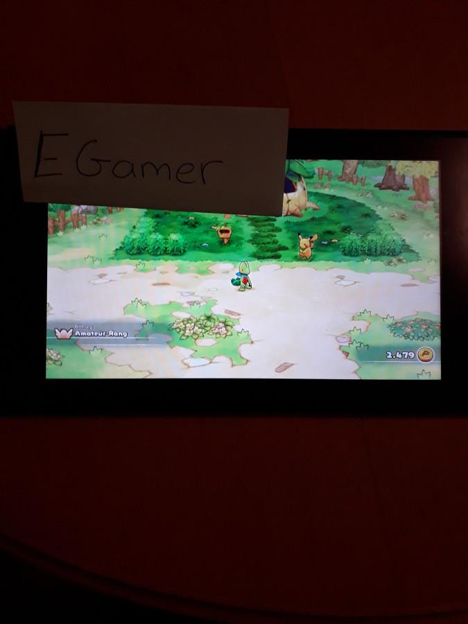 Gewinnspielteilnahme Pokémon Mystery Dungeon Retterteam DX